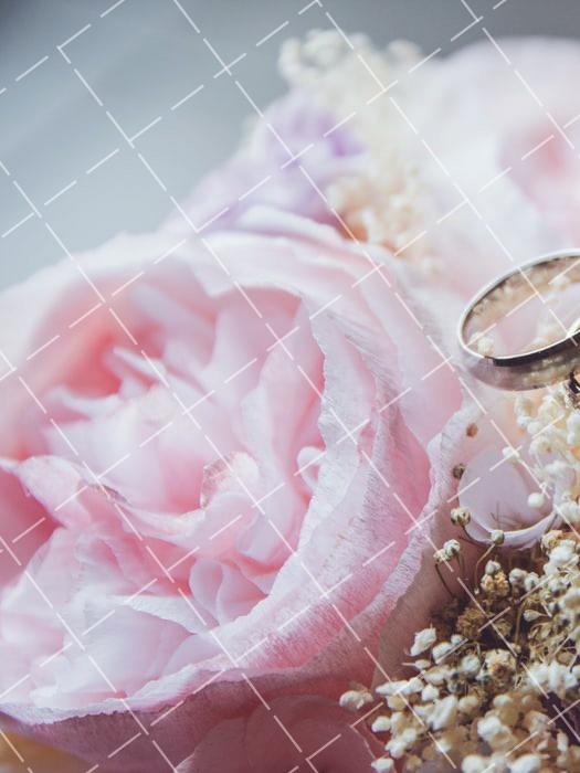 《【星图平台登录地址】太原婚纱摄影价格怎么样》