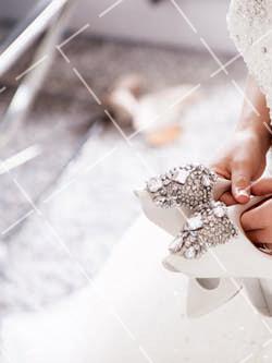 《【星图电脑版登陆地址】拍婚纱照的时候新人应该选择穿什么样的服装》