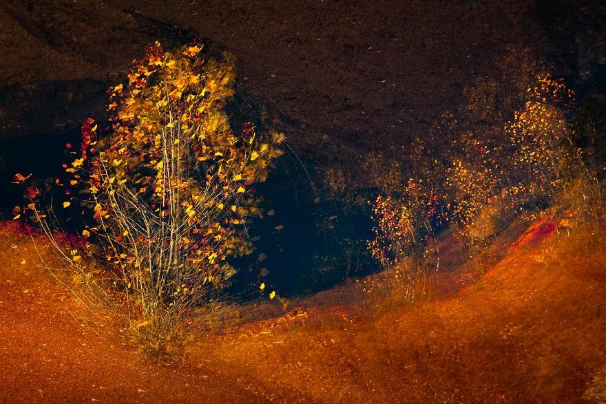时间与光影的痕迹 多重曝光下的梦幻自然