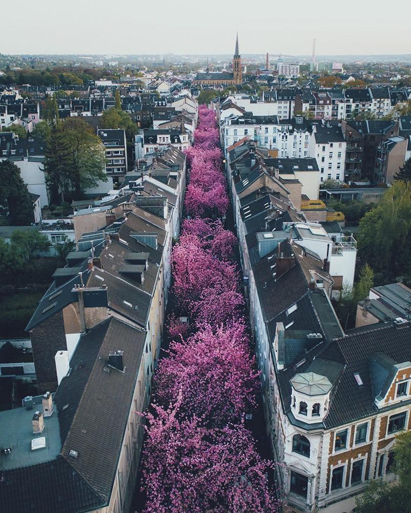 都市与自然的视觉探险 精致多彩的风光盛宴