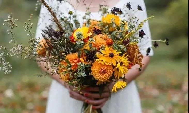 这个黄金周,济南办了8000余场婚礼!