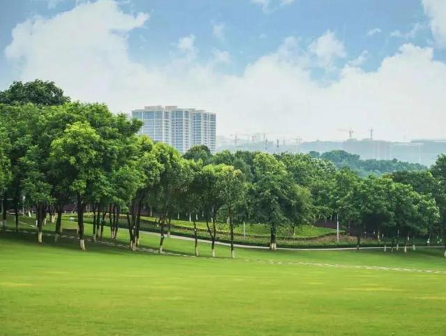重庆城市中心公园,成婚纱照打卡胜地